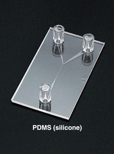 PDMS Chips
